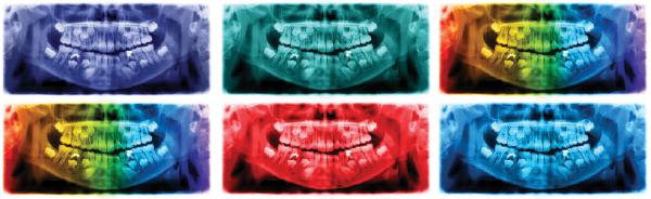 vector illustration/SHUTTERSTOCK.com