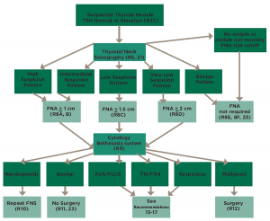 Figure 1. Algorithm for evaluation and management of patients with thyroid nodules based on US pattern and FNA cytology; several algorithms such as this one are available in the guidelines for quick reference to aid clinicians.