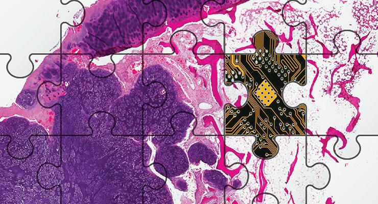 Pathology in the Digital Era