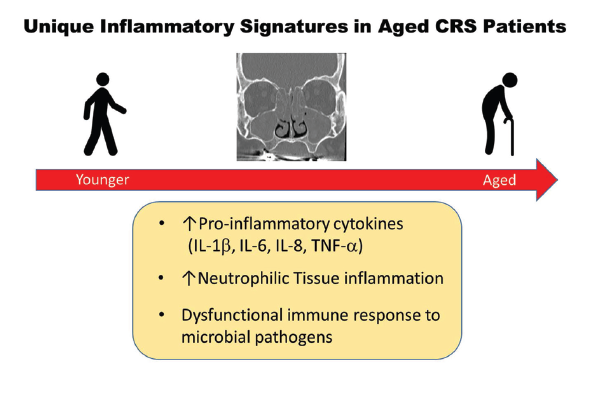 Figure 1. Unique Inflammatory Signatures in Aged CRS Patients. Reprinted from J Allergy Clin Immunol. 2019;143:990–1002, Copyright 2019, with permission from Elsevier.