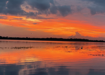 A photo by Dr. Wei of Lake Nona, Florida, her favorite spot to watch the sunset.