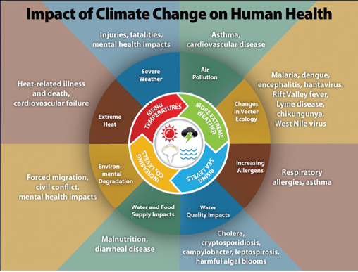 Source: Centers for Disease Control and Prevention. https://www.cdc.gov/climateandhealth/effects/default.htm